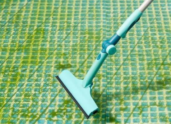 cleaning yellow algae