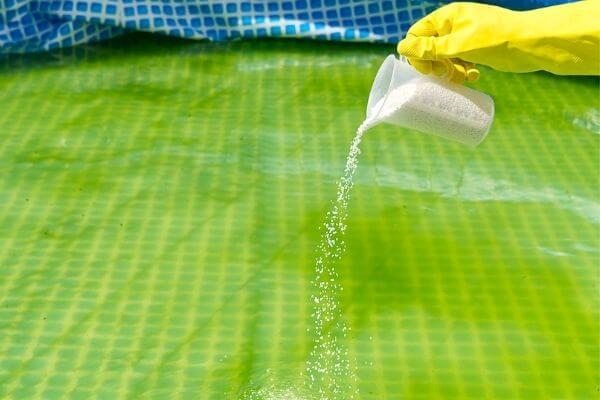 remove algae without vacuum cleaner