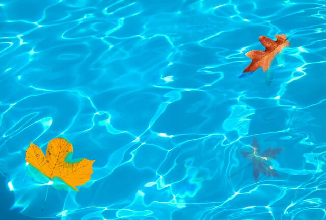 ways to clean leaves out of pool